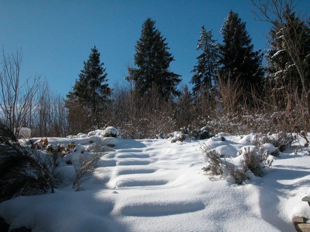 loisirs-vacances-autrement-tourisme-handicape-sejour-adapte-roanne-loire-rhone-alpes